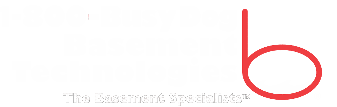 Reviews 1 800 Busy Dog